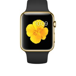 Apple Watch skärmbyte apple-watch-edition/42-mm-boett-18-karats-gult-guld-svart-sportband